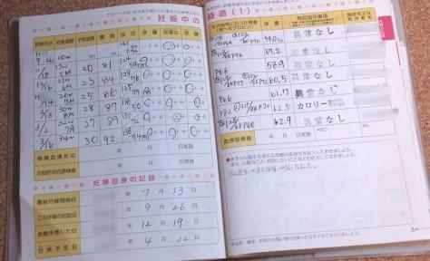 母子手帳の中面――検査結果の記録