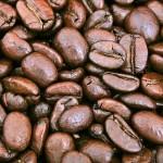 焙煎屋に聞いた3STEP~おいしいコーヒーの淹れ方