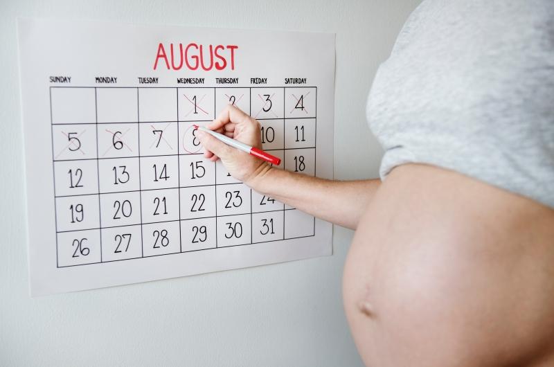 妊娠10か月間