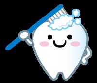 乳歯のイラスト
