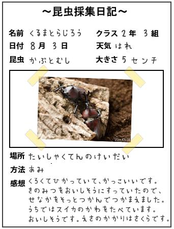 昆虫採集日記、昆虫発見日記