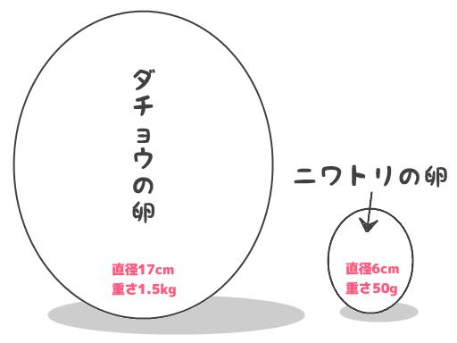 ダチョウの卵と鶏卵の大きさの比較