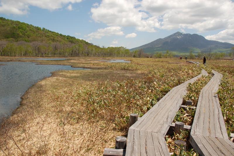 尾瀬ヶ原、湿地帯