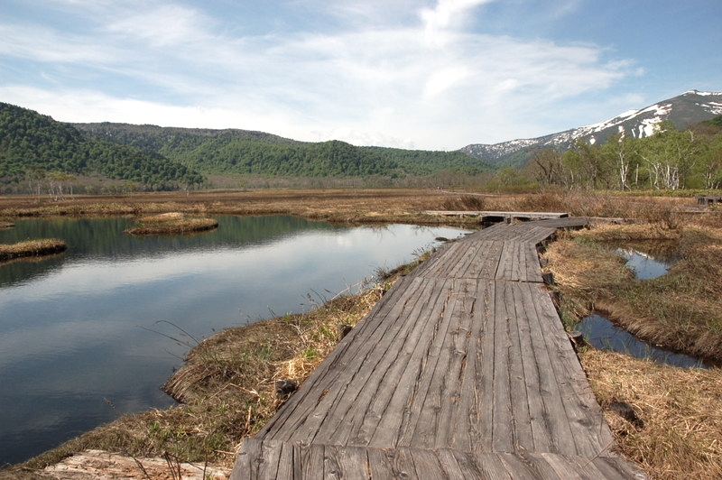 尾瀬の池沼