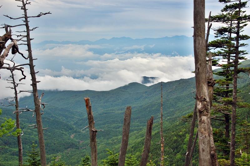 大弛峠から金峰山