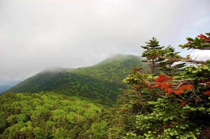 朝日岳から金峰山を望む