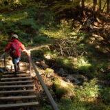 武甲山親子登山:一の鳥居を出発、表参道経由で山頂の御嶽神社を参拝、展望台から秩父の大展望を望む
